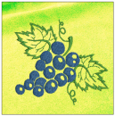 Grapes embroidery on yellow