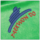 Taekwondo embroidery on green